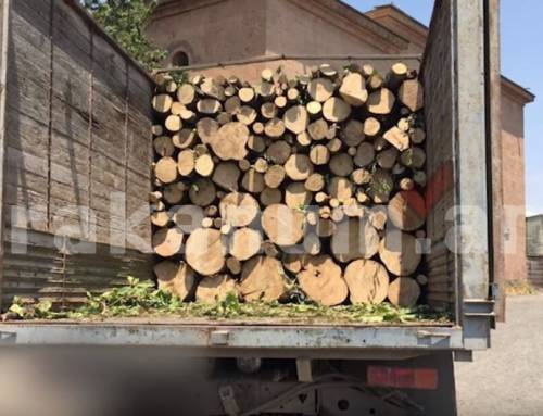 Տավուշում «Դանաղրան» կոչվող տեղամասից փայտանյութով բարձված բեռնատարը տեղափոխվել է ոստիկանություն