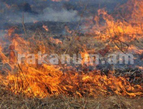 Վանաձորում հրդեհից այրվել է մոտ 50 հա խոտածածկույթ