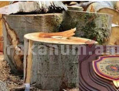Ծառերը մանրացված վիճակում հայտնաբերվել են Արտանիշ տեղամասում