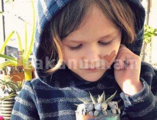 6-ամյա տղան հավաքել է 230 հազար դոլար ավստրալական հրդեհներից տուժածների համար