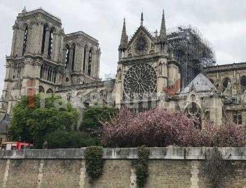 Փարիզում սկսվել են Նոտր Դամի երգեհոնի վերականգնողական աշխատանքները