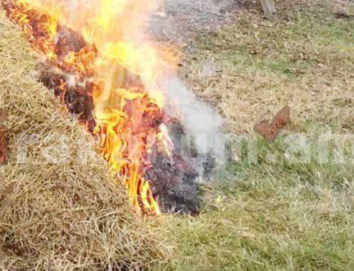 Նոր Ամանոս գյուղում անասնակեր է այրվում, դեպքի վայր է մեկնել 2 մարտական հաշվարկ