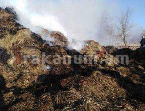 Լոռու մարզի Մեծ Պարնի համայնքում այրվել է 700 հակ անասնակեր