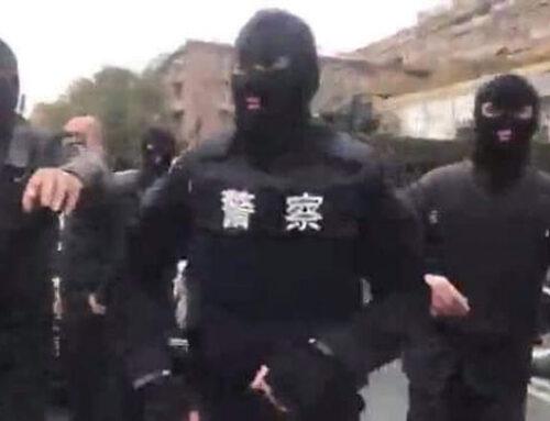 Այդ «չինական ոստիկանները» որևէ կապ չունեն իրավապահ համակարգի հետ․ դրանք օլիգարխների կողմից հավաքագրված մարդիկ են․ Նարեկ Մալյան