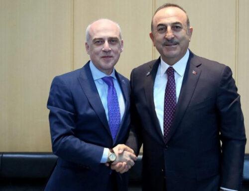 Վրաստանի արտգործնախարարը վաղը կայցելի Թուրքիա