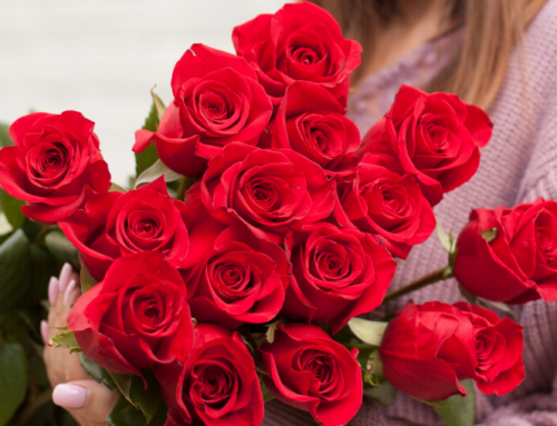 Ռուս բժիշկները բացատրել են` արդյոք համավարակի պայմաններում կանանց ծաղիկ նվիրելը կարող է վարակի տարածման պատճառ լինել