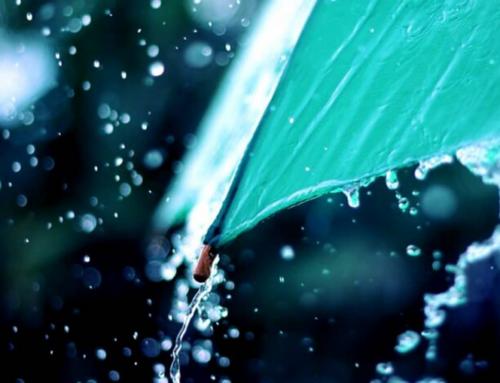 Ապրիլի 12-14-ը առանձին շրջաններում սպասվում է անձրև և ամպրոպ. օդի ջերմաստիճանն էապես չի փոխվի