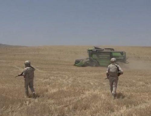 Խաղաղապահները Մարտունիում ապագհովում են բնակիչների անվտանգությունը ցորենի բերք հավաքելիս