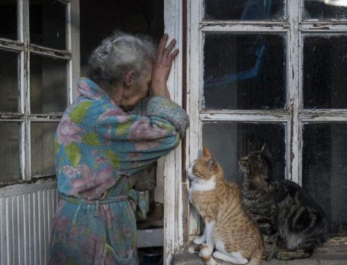 2020թ. Ադրբեջանի և Թուրքիայի հանցագործությունների հետևանքով 40,000 անձինք դարձել են ներքին տեղահանված