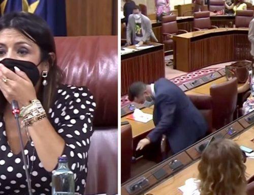 Անդալուզիայում առնետը խափանել է խորհրդարանի նիստը (տեսանյութ)