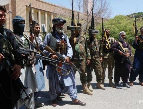 Աֆղանստանի ՊՆ-ն հայտնել է «Թալիբանի» 455 զինյալի ոչնչացման մասին