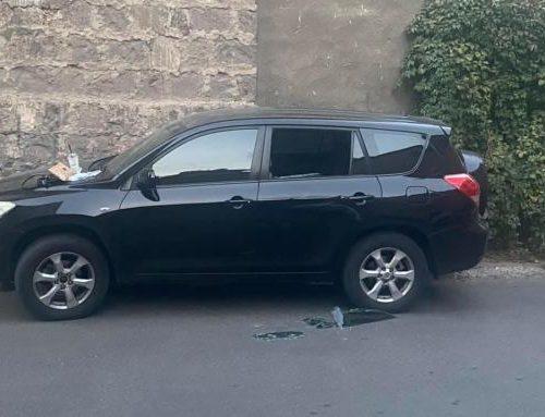 Թալանել են Մարինե Մանուչարյանի մեքենան ու տարել են լափթոփը. «Ադեկվադ»