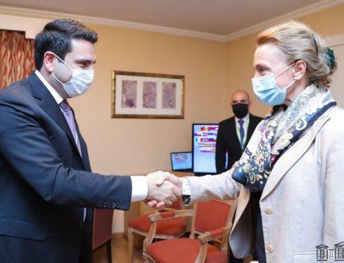 ՀՀ ԱԺ նախագահ Ալեն Սիմոնյանը հանդիպել է ԵԽ գլխավոր քարտուղար Մարիա Պեյչինովիչ-Բուրիչի հետ