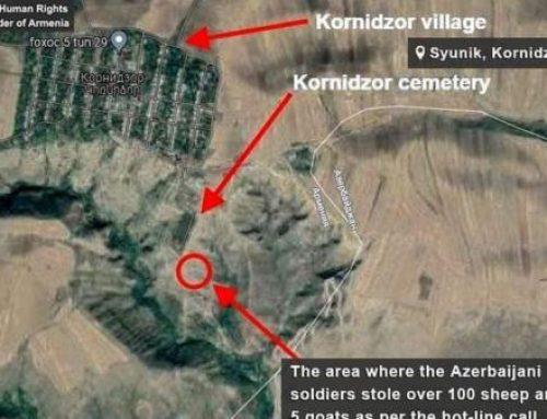 Սյունիքի Կոռնիձոր գյուղի հարակից տարածքից ադրբեջանցիները հափշտակել են 107 ոչխար և 5 այծ